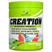 SPORT DEFINITION CREATION GRAPEFRUIT MINT 485G