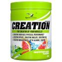 SPORT DEFINITION CREATION GRAPEFRUIT MINT 485G